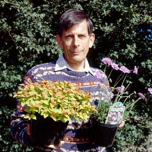David Tristram Plant Breeder