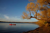 Fall on Lake Harriett