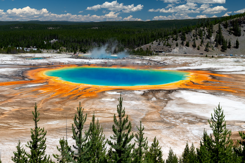 Yellowstone National Park, Grand Prismatic, Afternoon Overview