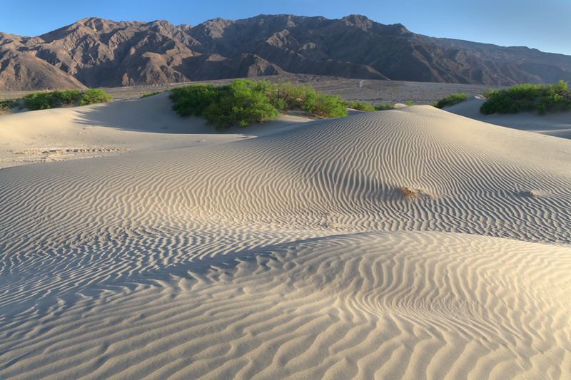 Death Valley National Park, Mesquite Dune Ripples