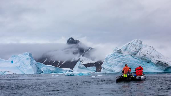Together with another zodiac we threaded our way between the icebergs searching for wildlife.  Here in Cierva Cove it did not take long to find it.