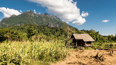 A field house in a cornfield outside of Pha Ngeun, Laos