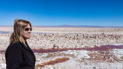 Linda looking out over the Salar de Atacama, At over 1,200 square miles in size it is the 3 largest salt flat in the world and largest source of lithium in the world.
