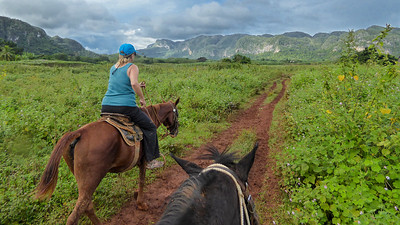 Linda was totally at home on her horse as we set off for our tour in the Valle de Viñales.   Me, not so much, it was my second time on a horse,  My horse was spirited and wanted to get to its destination quickly.