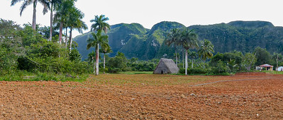 The tobacco harvest in Valle de Viñales was finished for the year.  The fields were fallow and tobacco cured.  Still. beautiful scenery to take an excursion through by horseback.