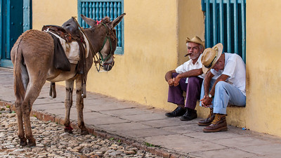 Two men sleepily wait with their donkey for tourist photos in Trinidad's Plaza Carillo.