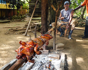 Roast pork is a traditional food found throughout Cuba.  Here in Trinidad, the pitmaster uses a steering wheel to control the spit over the open pit fire.