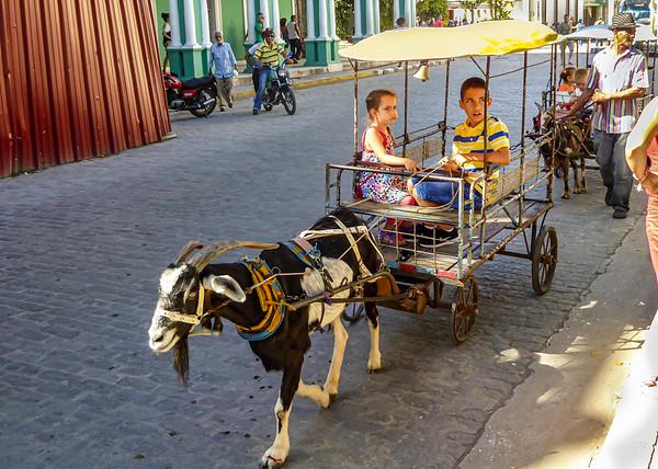 At Parque Vidal in central Santa Clara, children ride in goat carts around the square.