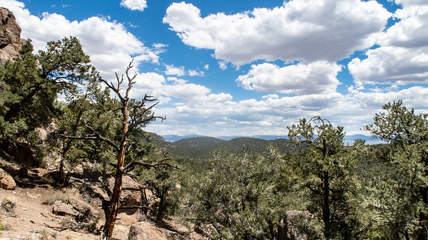 The view from outside the Toquima Cave.  Pinion Pines dominate the landscape.  Still very valuable to the Native Americans for their pine nuts.