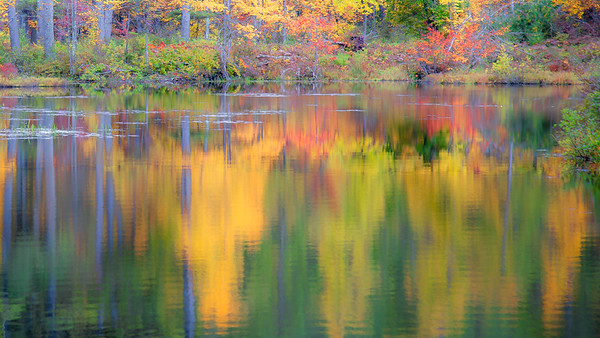 Autumn color reflections at Bear Brook State Park, New Hampshire