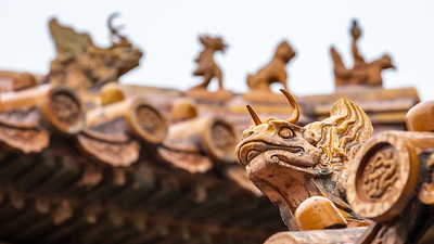 Detail of the ceramic tile that adorns the roofs of the Forbidden City in Beijing.