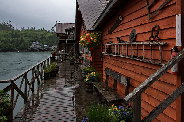 Alaska, Halibut Cove