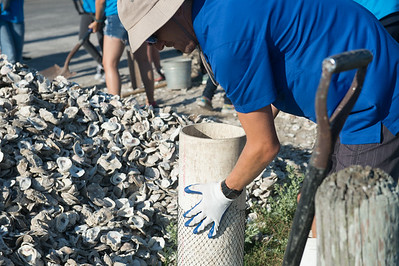 050716_SinkYourShucks-OysterReefRestoration-7018