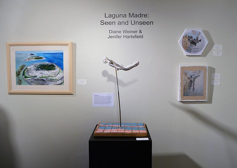 p-Art Center Open House-Artist-in-Residence-Program-Laguna Madre-Seen-Unseen_0862