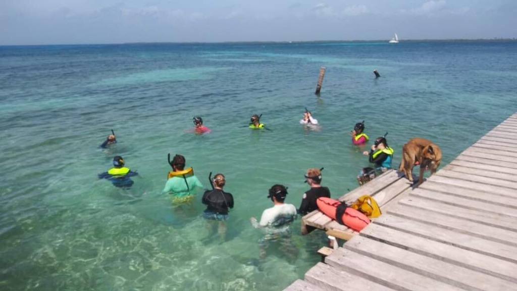 p4-Belize-Coral-Reef-Study-Abroad-Program-Garrett-Swenson