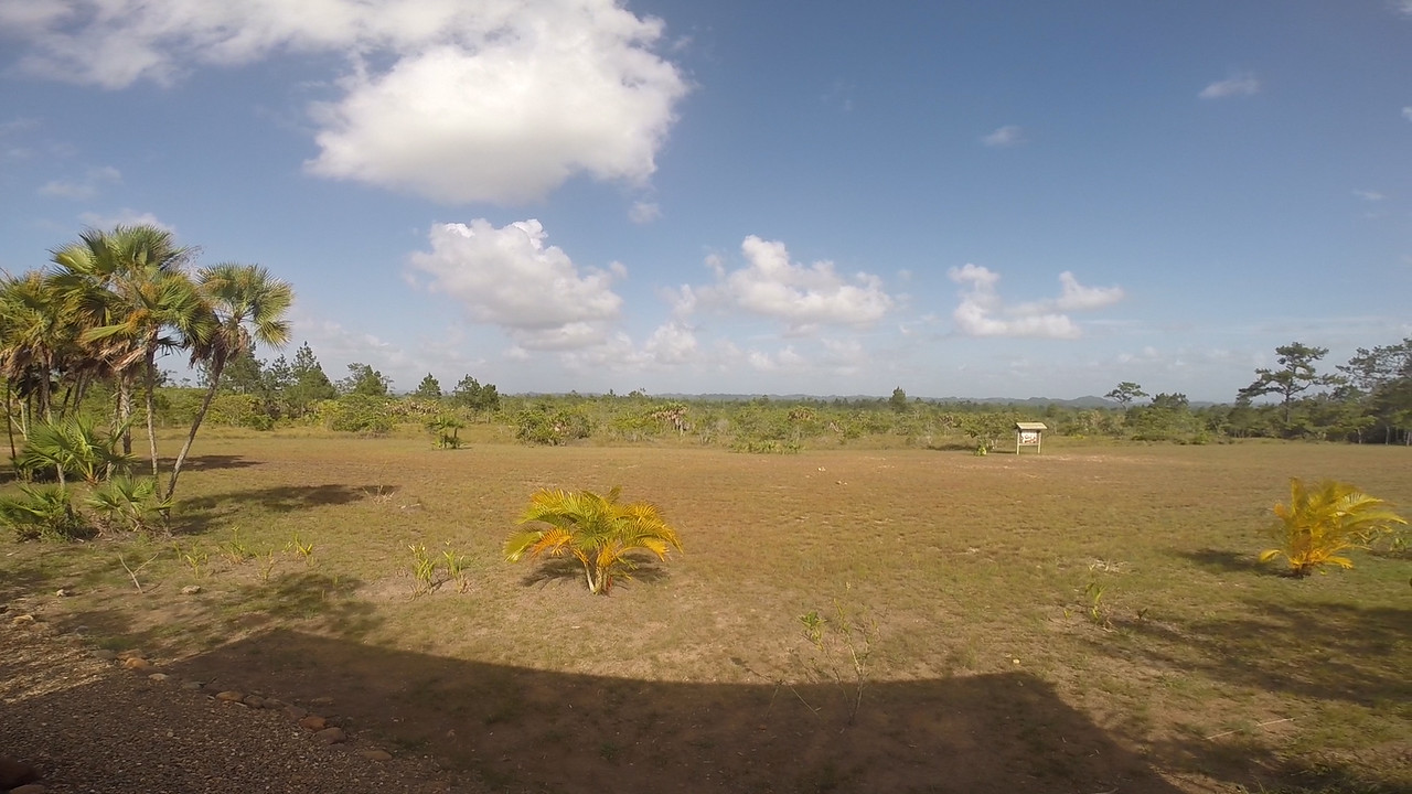 p-Belize-Coral-Reef-Study-Abroad-Go-Pro-Hogan