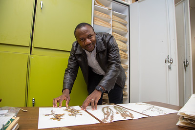 Barnabas Daru showing different types of plants that have been archived.