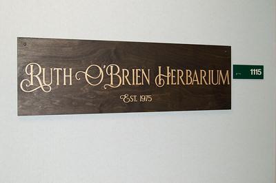 p-COSE-Biology-Ruth-OBrien-Herbarium-Oct-2020