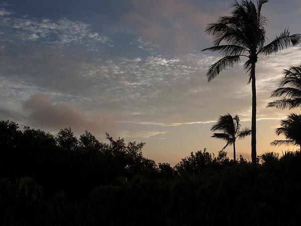 018  Beach House View