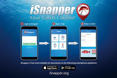 isnapper-news