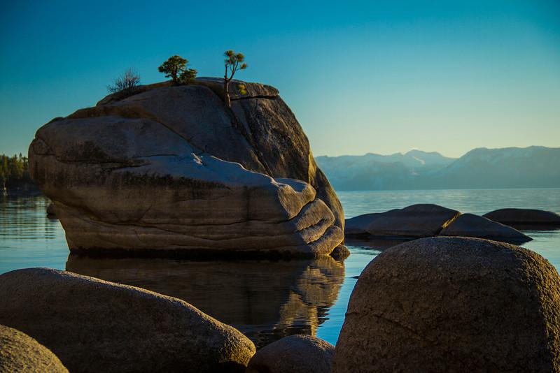 Bonsai Rock South
