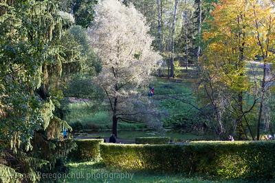 Light beat in autumn park