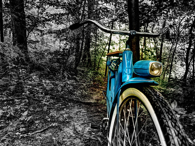 The Old Blue Bike on the Gold Creek Trail