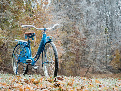 The Old Blue Bike - Frozen in Time