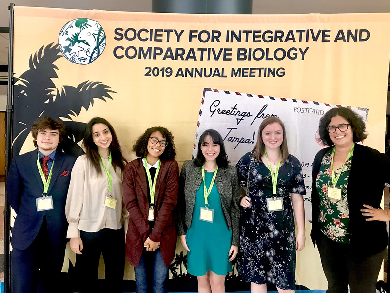 Quinn Ferguson, Daphne Toglia, Jas Marie, Robyn McCartan and Kelly South with Assistant Professor Liz Leininger at the Society for Integrative and Comparative Biology. The students presented a poster on the neural and muscular basis of animal behavior.