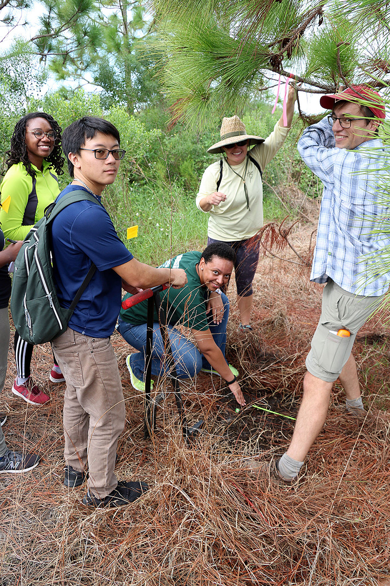 Biology professor Brad Oberle, right, works with New College students at Robinson Preserve in Manatee County.