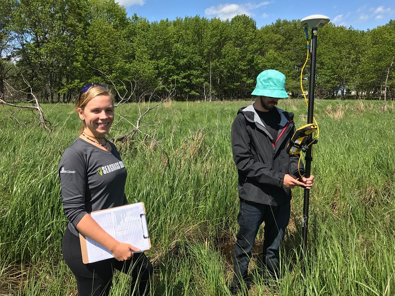 New College students Constance Sartor and Lance Price do field work for a project that may help restore coastal wetland areas around the Great Lakes.