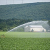 Robert Inglis/The Daily Item  A sprinkler waters crops in a field along Route 405 in Milton on a warm Friday afternoon.