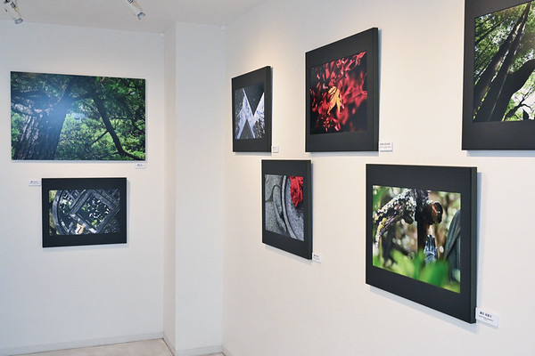 Artworks on frame mat panel sized 65x55 cm. (26x22 in.) and on aluminum float mount sized  102x68 cm. (40x27  in.)