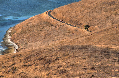 Coyote Hills Trail J-C
