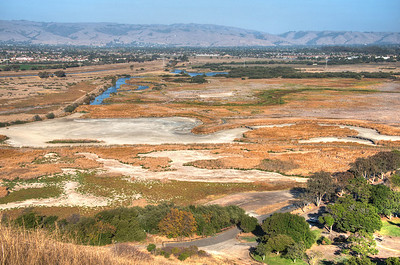 Coyote Hills Marsh