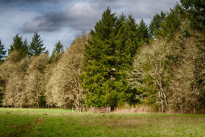 GMM_0874_HDR