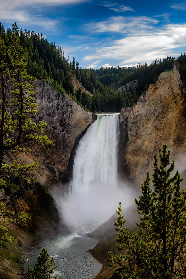 Yellowstone NP,  Wyoming, Montana, and Idaho USA