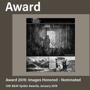 The Spider Awards (2019) - 4 Images Honored