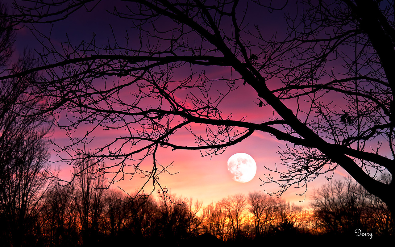 Red Moonset