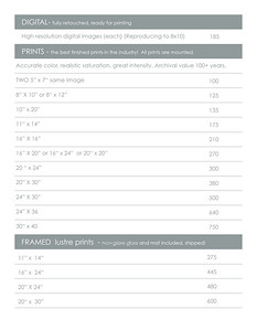 16 Print Pricing