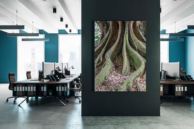 Motiv Baumwurzeln für ein Großraumbüro
