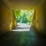 Tunnel Entry into Nature, Salt Creek Rec Area bunker, Port Angeles, WA USA