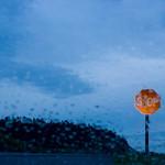 Stop sign seen through rain soaked windshield, Coupeville, WA USA