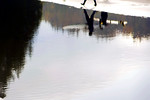 Tidal pool reflection of surfers, Washington Coast