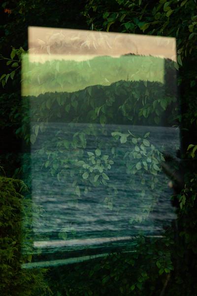 Multiple nature window reflection, Olympic Peninsula
