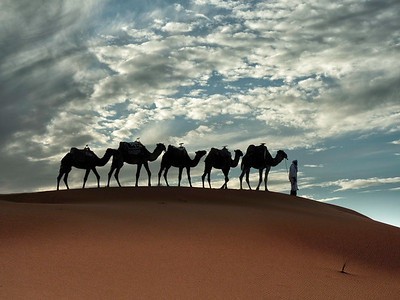 Camels in Clouds