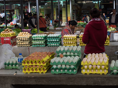 Eggs Anyone?