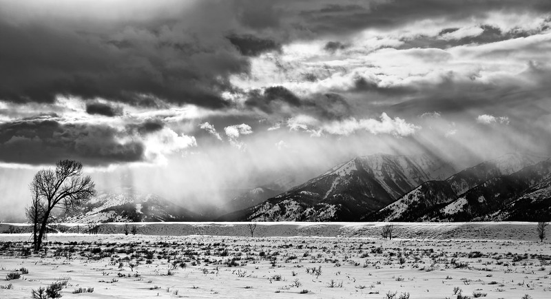 Snowstorm in the Tetons