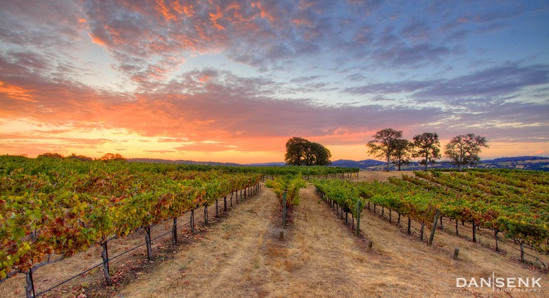 first light on the sierra foothills