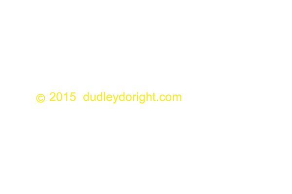 2015 dudleydoright  gold